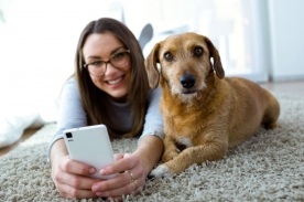Social Media, Wellbeing, Smartphone, Woman, Dog
