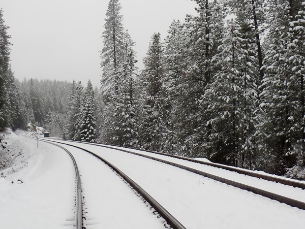 Snow Tracks, Danielle Collins, Photography, Coach, Wellbeing, Wellness, Sacred Pause